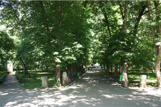 parcul-mare-gherla